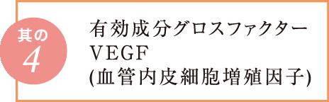 有効成分グロスファクターVEGF(血管内皮細胞増殖因子)