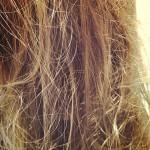 頭皮の乾燥、髪の乾燥。乾燥対策!!!