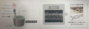 06BC0FB0-B4A3-41E4-87E5-29DC9E85B02A